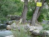 Fischtreppe-Schild